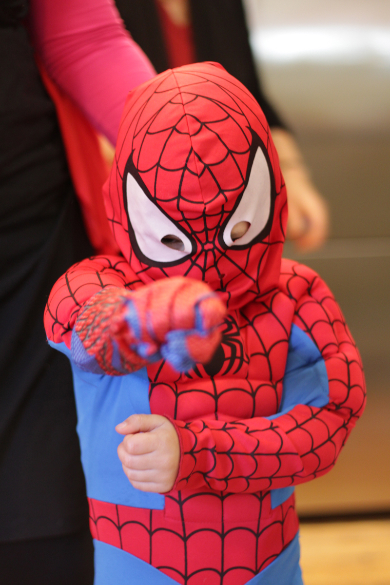 This is an image of a Spiderman costume.